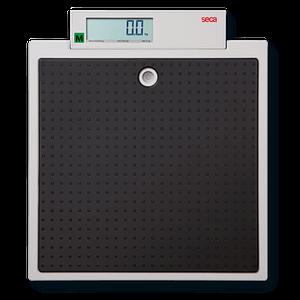 seca_875_Class_III_Approved_Scale